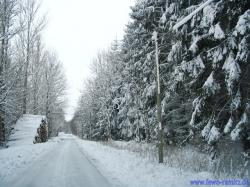 "Bild ""Winter_1.jpg"""